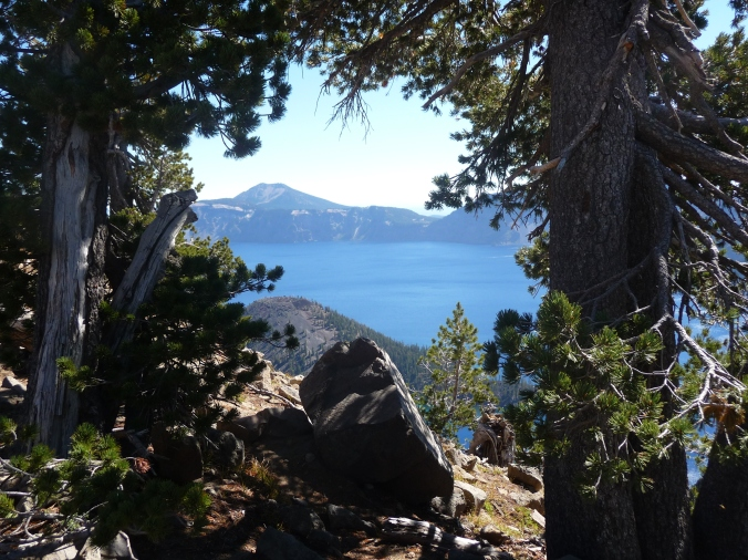 Crater Lake Framed by Trees