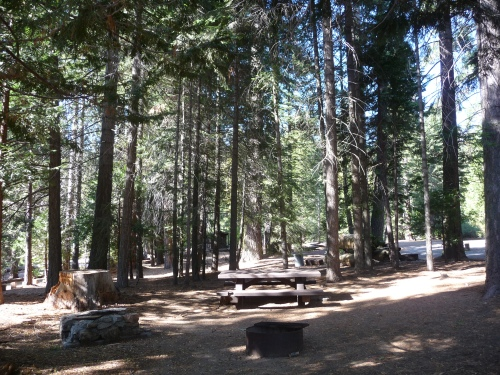 Empty Campsite at Redwood Campground in SNP