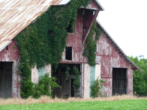 Barn in Spring Hill, TN