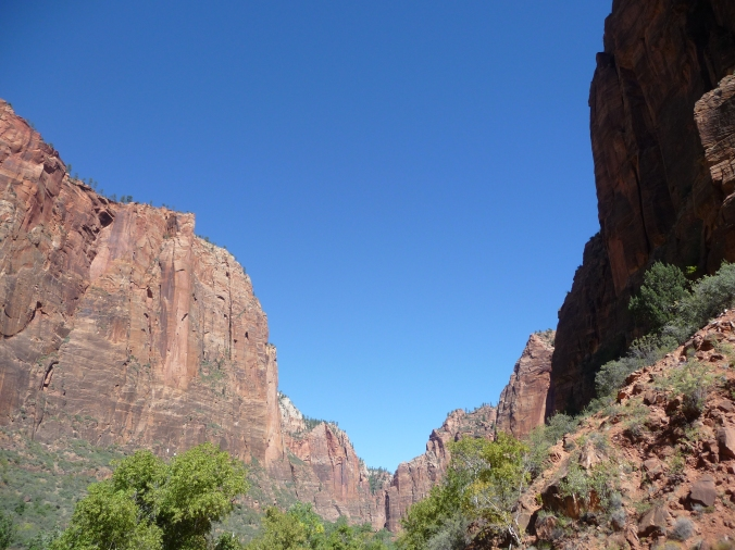 Zion_Canyon View_1