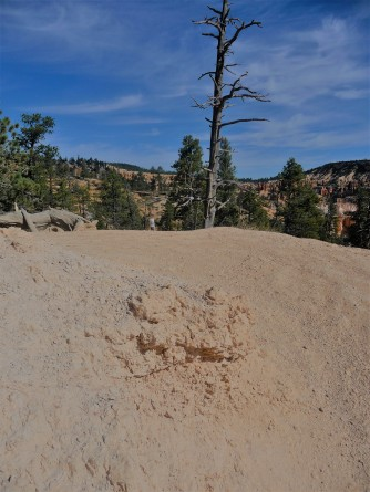 Bryce Canyon_Queen's Garden Trail_Uphill