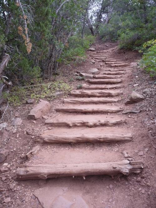 Zion_Taylor Creek Trail_3