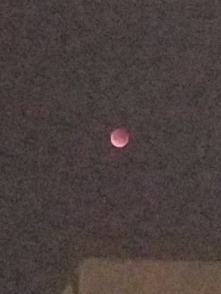 Eclipsed Moon_2017_01_31