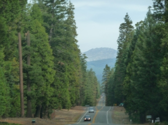 Road to Lassen