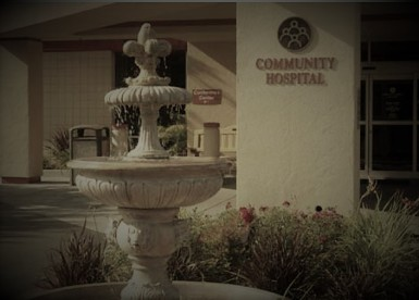 Fountain_Past