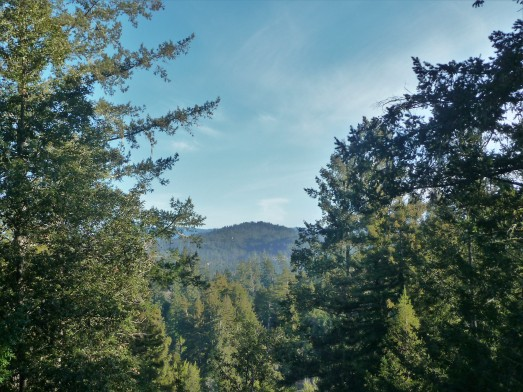 San Lorenzo Valley_2