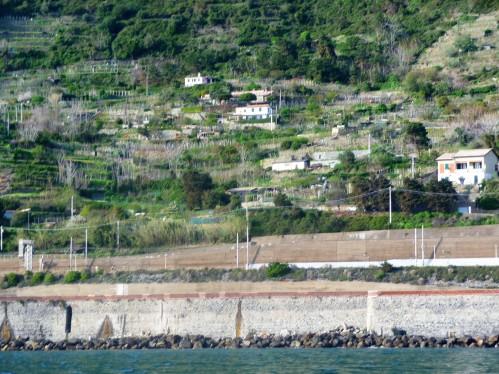 Cinque Terre_Terraced Hills_1