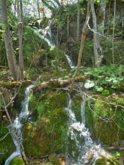 Plitvice_Waterfall_4