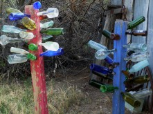 China Ranch_Bottle Trees