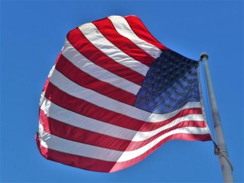 Palm Springs Flag