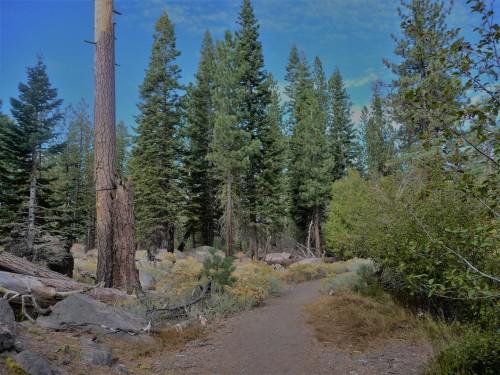 California Hiking Trail