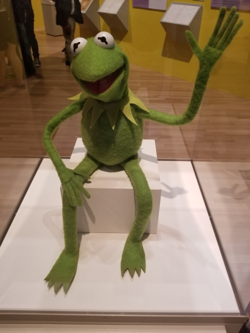 Kermit the Frog_Display Case