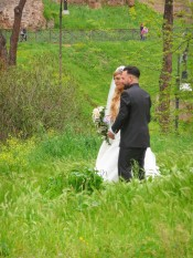 Wedding Witness_2