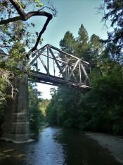 Bridge_1