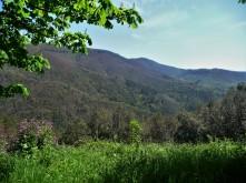 tuscany valley_1
