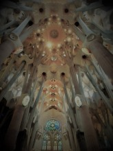 Sagrada Familia Ceiling_Burlesque