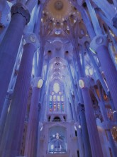 Sagrada Familia Ceiling_Denim