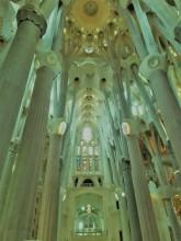 Sagrada Familia Ceiling_Neo