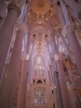Sagrada Familia Ceiling_Rouge