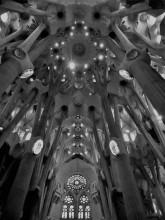 Sagrada Familia Ceiling_Vanilla