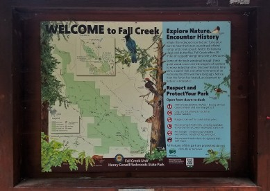 Fall Creek_All Things Concerning_1