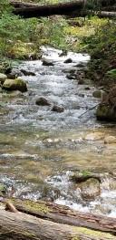 Fall Creek_Creek Churning