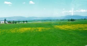 Window View_Croatia