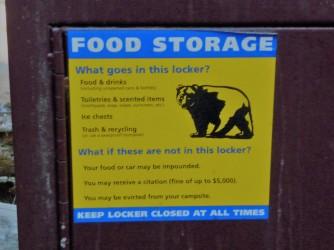 Bear Box Rules
