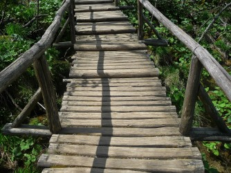 Stair Bridge_1