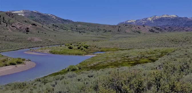 Sierras_River_Meadow