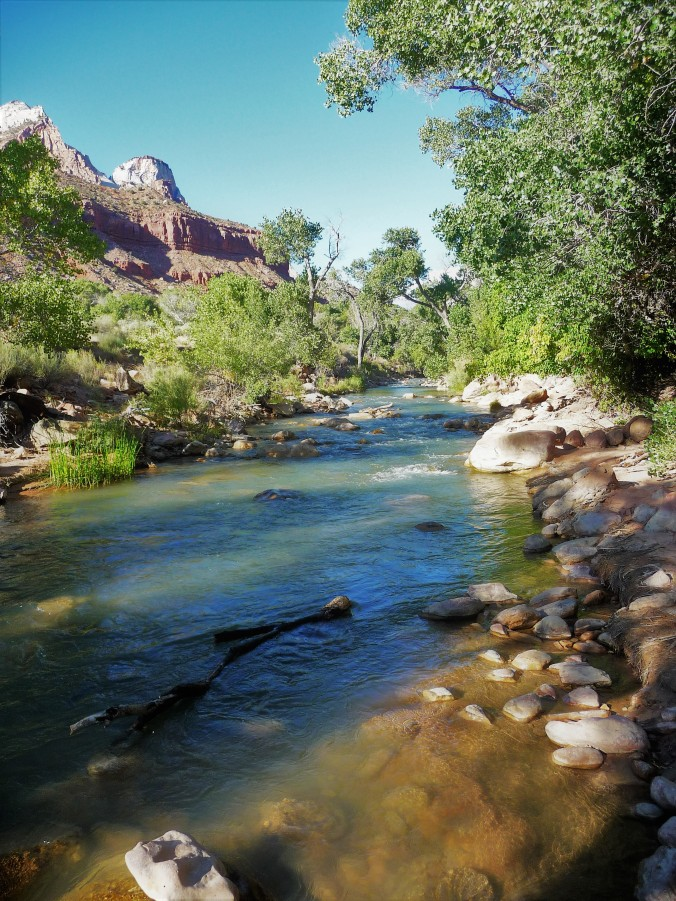Zion_River View