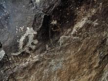 Petroglyph National Monument_Petroglyph_6