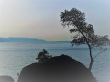 Italian Riviera Coast_Icarus