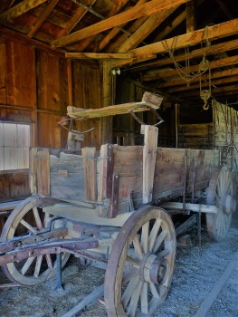 Bodie_Cart_3