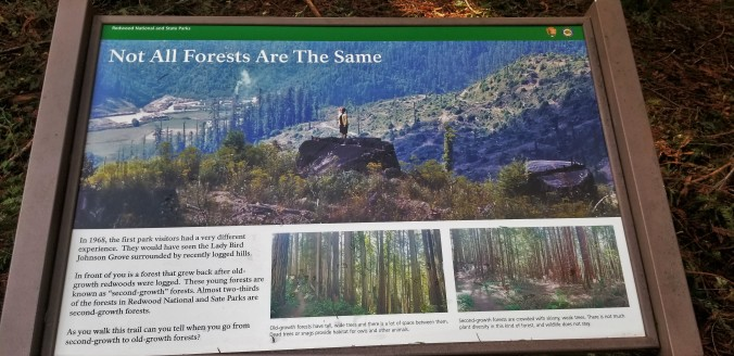 Old Growth vs New Growth Sign