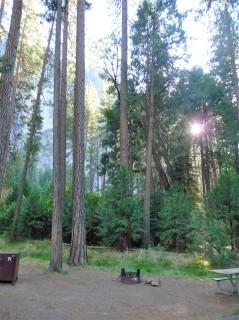 Yosemite Campground_5