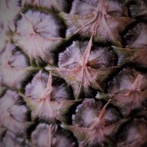 Pineapple Eyes_Red